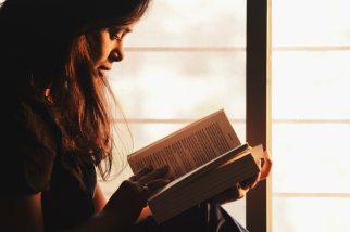 adult-book-brunette-1031588